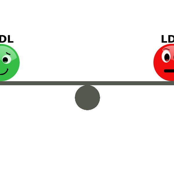 HDL und LDL als Emoticon
