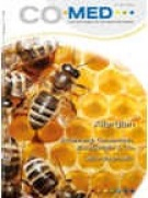 Chronische Entzuendung boswellia carterii - Naturheilkunde
