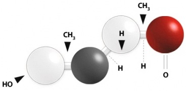 DHEA Dehydroepiandrosteron - Naturheilkunde