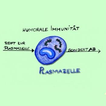 Immundiagnostik Naturmedizin 350x350 - Naturheilkunde