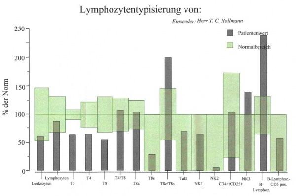 Immunstatus gross Lymphzytentypisierung 1 - Naturheilkunde