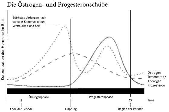 Oestradiol E2 Oestrogen Progesteronschuebe Grafik - Naturheilkunde