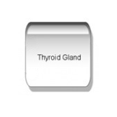 TSH Thyrotropin Naturheilpraxis - Naturheilkunde
