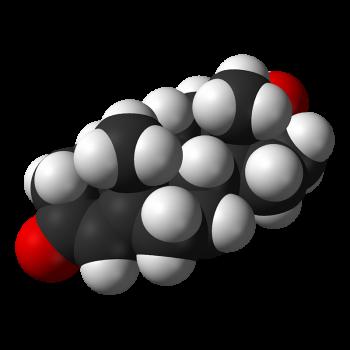 Testosteron Naturmedizin 350x350 - Naturheilkunde