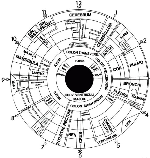 augen iris diagnose 578x606 - Naturheilkunde