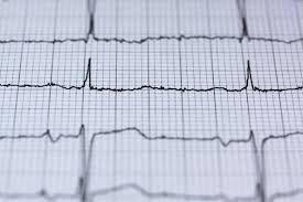 Curcumin für Leber und Herz