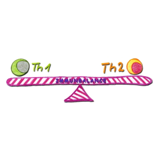 Th1 – Th2 Immunbalance