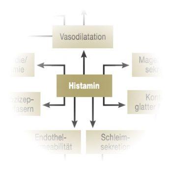 histaminunvertraeglichkeit histaminose histaminintoleranz naturmedizin 350x350 - Naturheilkunde
