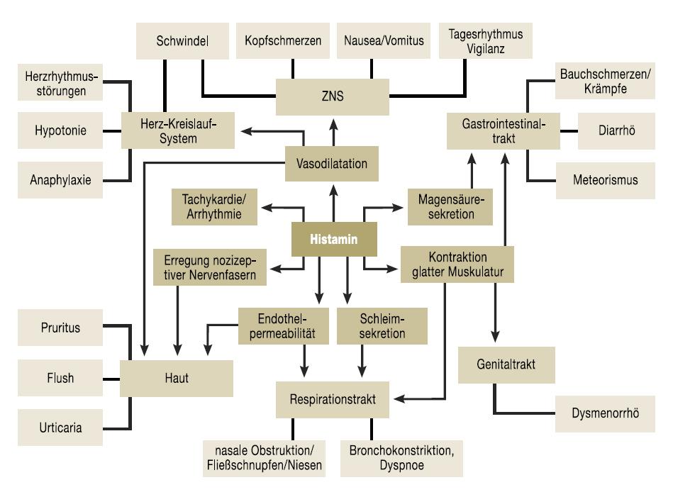 histaminunvertraeglichkeit histaminose histaminintoleranz - Naturheilkunde