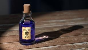 poison 1481596 1920 308x174 - Naturheilkunde